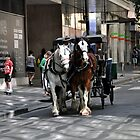 Melbourne City Streetscape by Karen E Camilleri