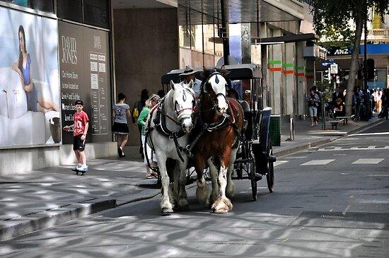 Melbourne City Streetscape by Karen E Camilleri