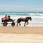 Clip Clop - horse rides on the beach by Jenny Dean