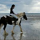 ... the Gypsy Cob! by oulgundog