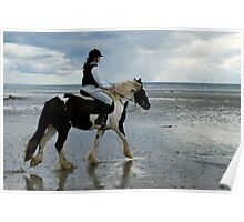 ... the Gypsy Cob! Poster