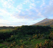 sunrise over senaru rice fields, lombok by nicole makarenco