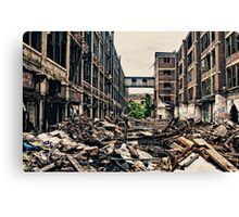 knee deep in the rubble Canvas Print