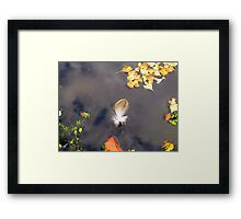 A Touch Of A Feather  Framed Print