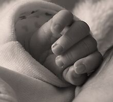 Tiny hands by Pam Stewart