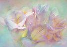 dream of spring by Teresa Pople