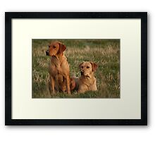 Sandy and Amber Framed Print