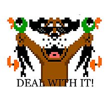 Duck Hunt Deal With It! Photographic Print