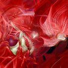 The Romance by Linda Sannuti