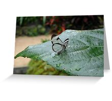 a tiny little Glasswing Greeting Card