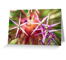 purple explosion of little flowers Greeting Card