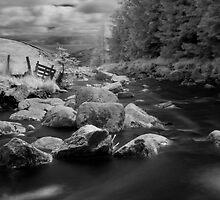 Glenmacnass Waterfall in County Wicklow, Ireland by Dave  Kennedy