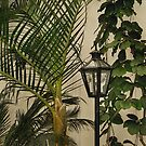 Tropical Lamppost by Gordon  Beck
