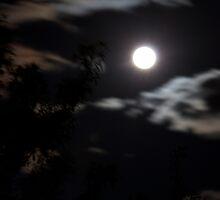 Eerie Orange skies#2 Geelong (14/09/11) by LJ_©BlaKbird Photography