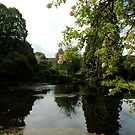 Bovey castle pond by 24Flowers