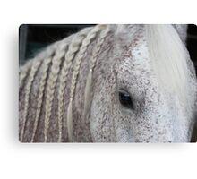 Beautiful Arabian with braids Canvas Print