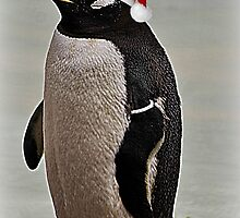 Merry Christmas Mr Penguin by Ladymoose