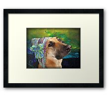 Mallow and her knitted hat Framed Print