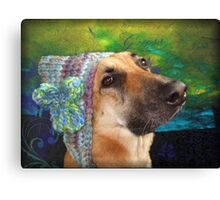 Mallow and her knitted hat Canvas Print