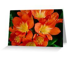 Sun Rise Flowers Greeting Card