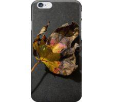 Fallen leaf in fall iPhone Case/Skin