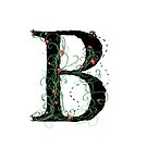 B by Claire Elford