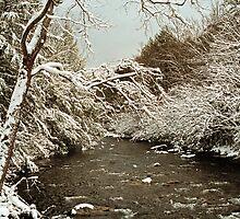 LITTLE RIVER, WINTER by Chuck Wickham