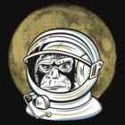 Space Monkey by Fanboy30