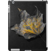 Color splash fallen leaf iPad Case/Skin