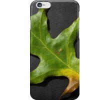 Fallen green leaf iPhone Case/Skin