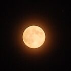 Full Sept Moon by Barbara Anderson
