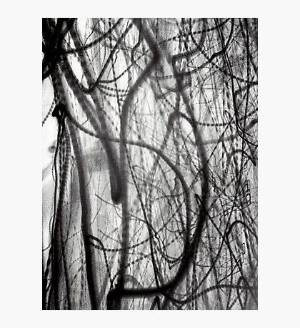 making lightning inverted  Photographic Print