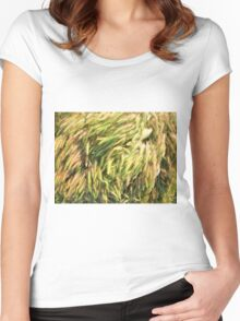 Top view on the dry grass of the lawn Women's Fitted Scoop T-Shirt