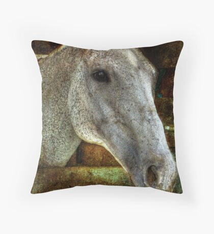 Equine Throw Pillow