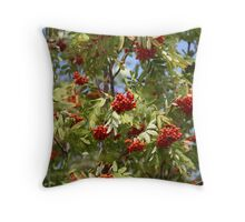 bunches of red rowan swaying Throw Pillow