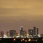 Miami Skyline by Rene  Triay