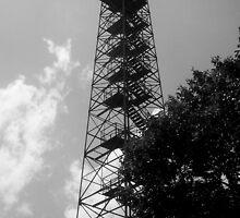 Big Walker Lookout Tower by Mechelep
