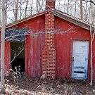 Old Red Shack by Mechelep