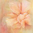 mellow by Teresa Pople