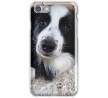 Benson  iPhone Case/Skin
