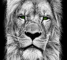 The King - Lion Drawing by Doreen Erhardt