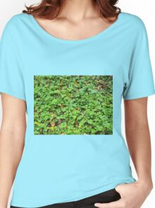 Dew on green plants that grow from the fallen yellow leaves Women's Relaxed Fit T-Shirt