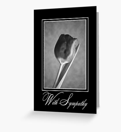 Solitary Tulip in Black & White Greeting Card