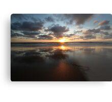 Sunset and Seaweed Metal Print