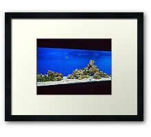 Large and long aquarium with sea water blue Framed Print