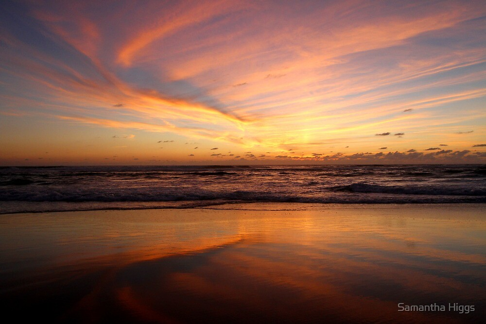 Feathered Sunset by Samantha Higgs