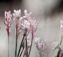 Misty Spires by Margi
