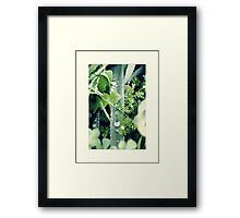 it's a jungle Framed Print