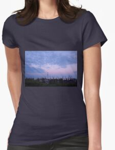 View of a cargo seaport against the evening cloudy sky Womens Fitted T-Shirt