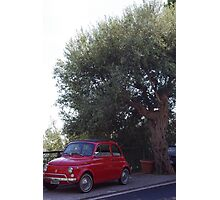 Fiats & Olives Photographic Print